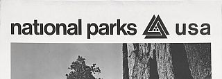 National Parks Poster: Giant Sequoias at Yosemite National Park, Photo by Ansel Adams (1968)