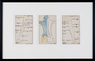 Set of 3 Medical Drawings [torso back]. Siegfried Berthelsdorf